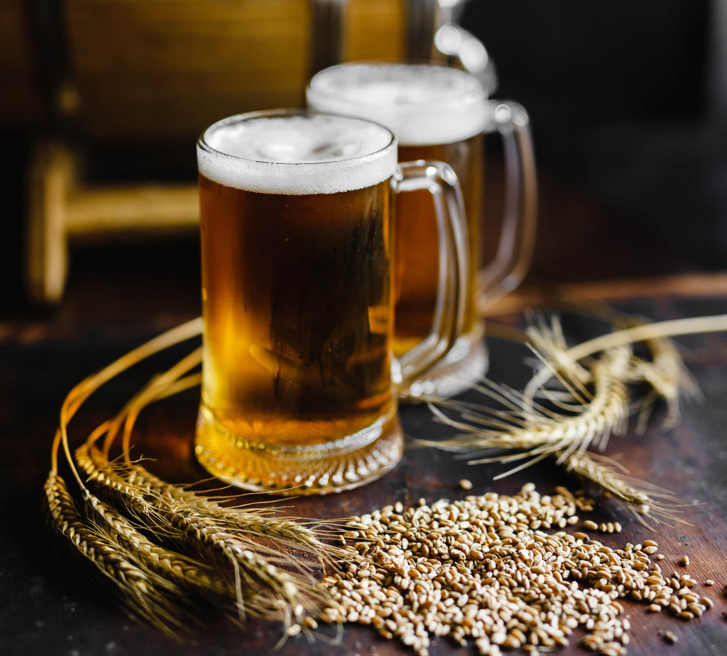 Beer glasses with wheat and brewing barrel