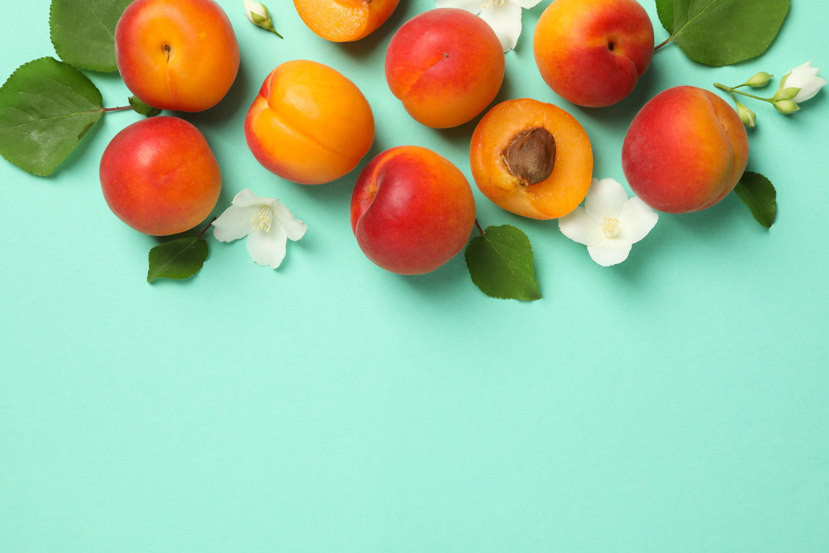 Fresh apricots on mint background