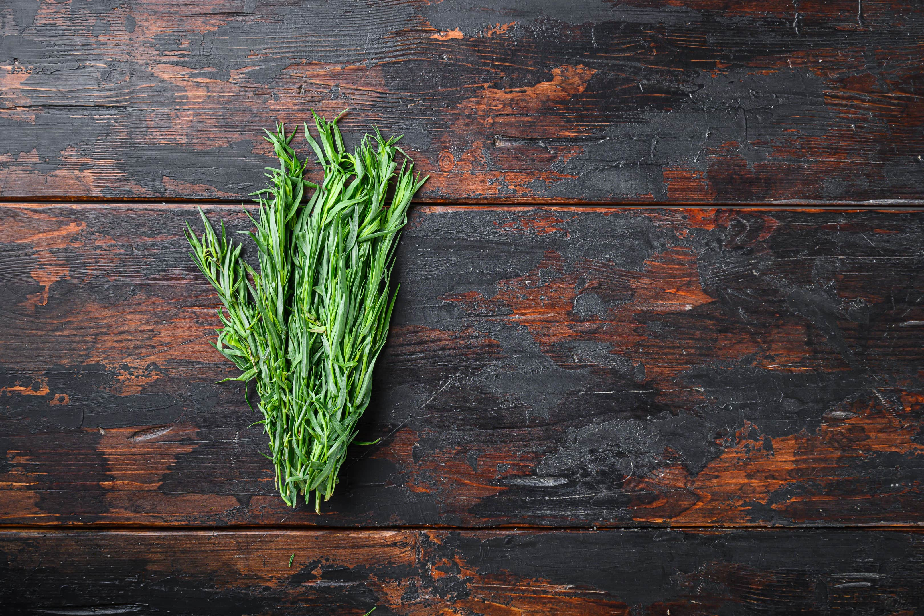 Fresh tarragon bunch on wooden table