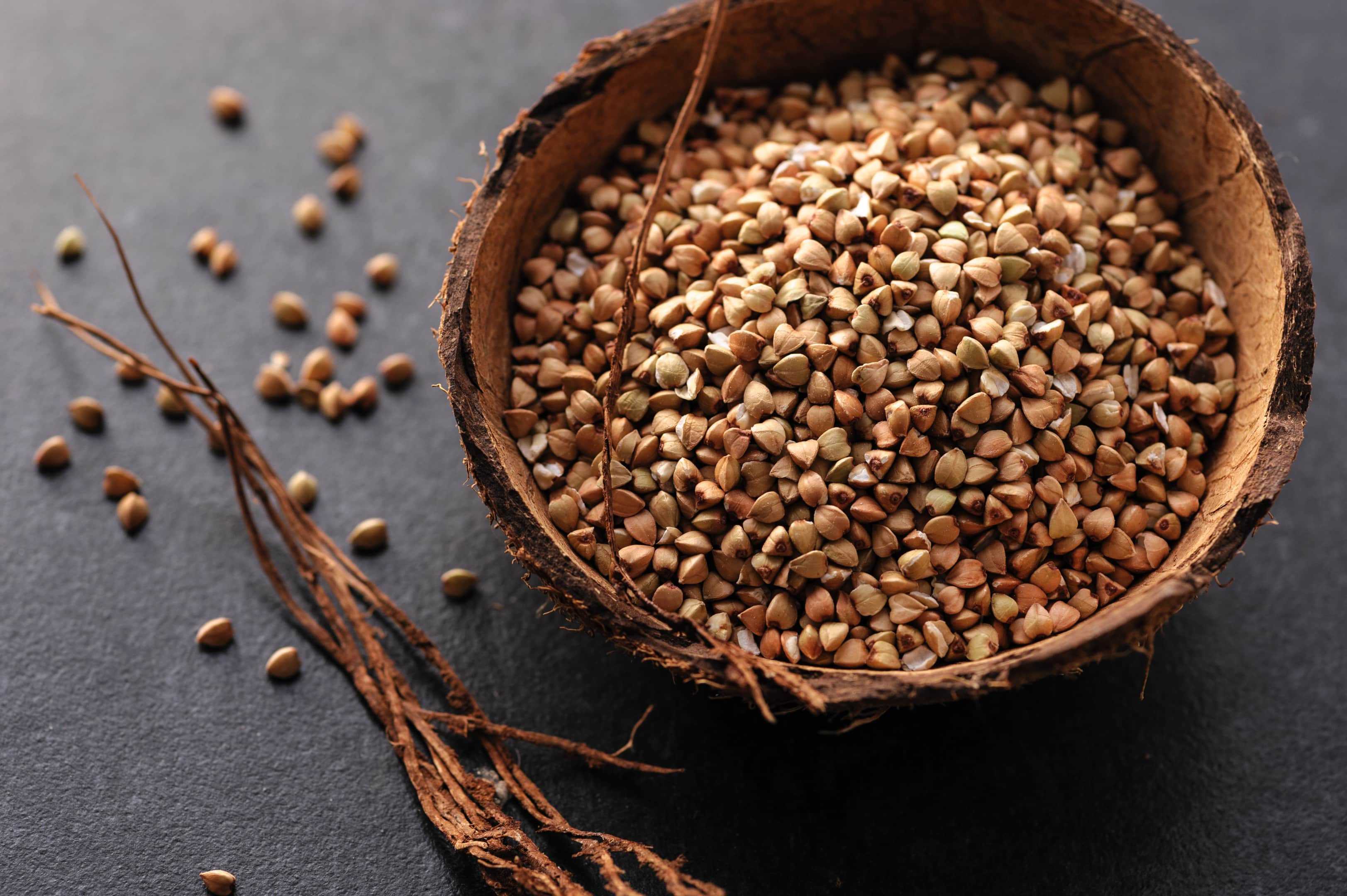 Green buckwheat grains in coconut bowl