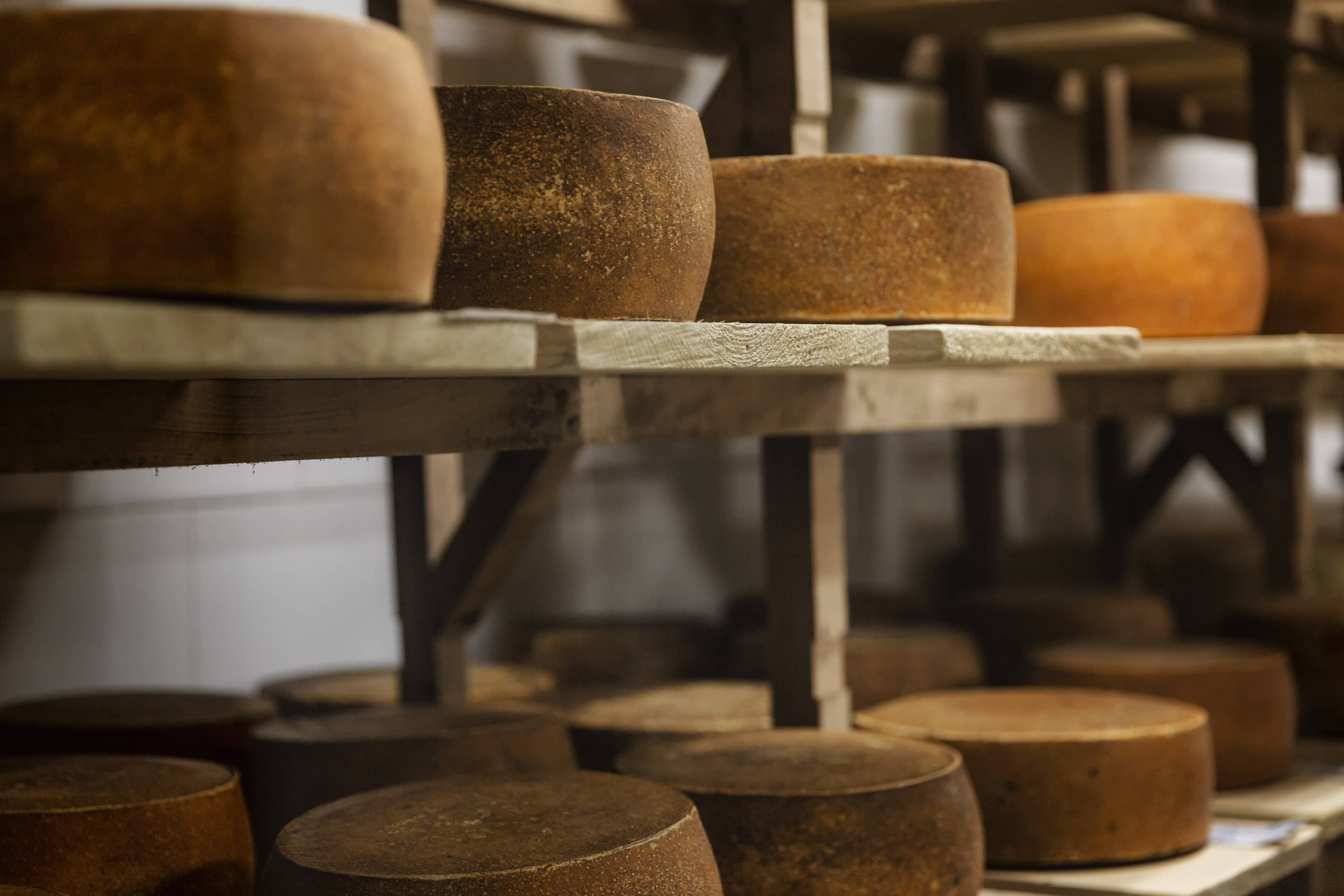 Loops of cheese on wooden shelves