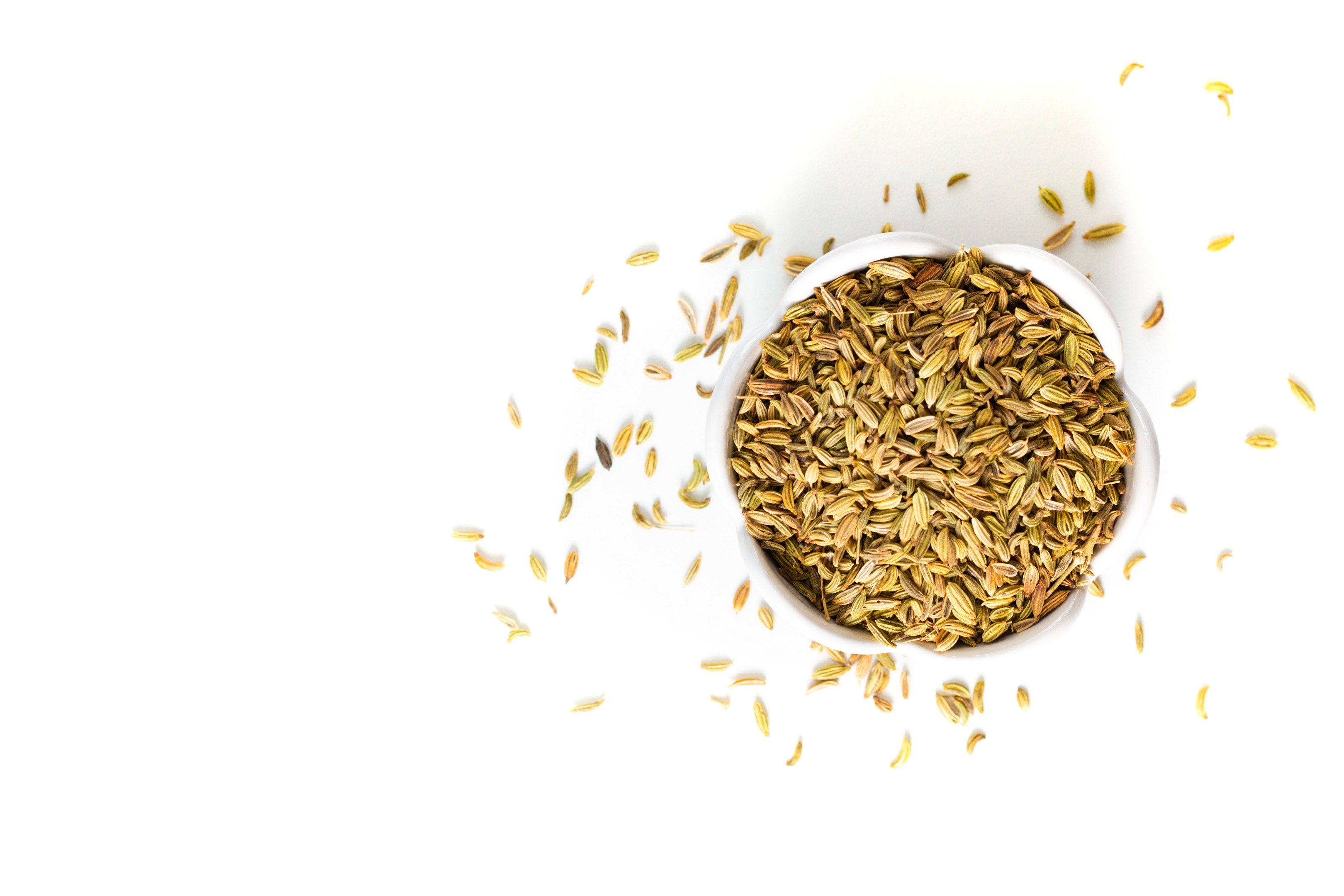 Fennel seeds on white background