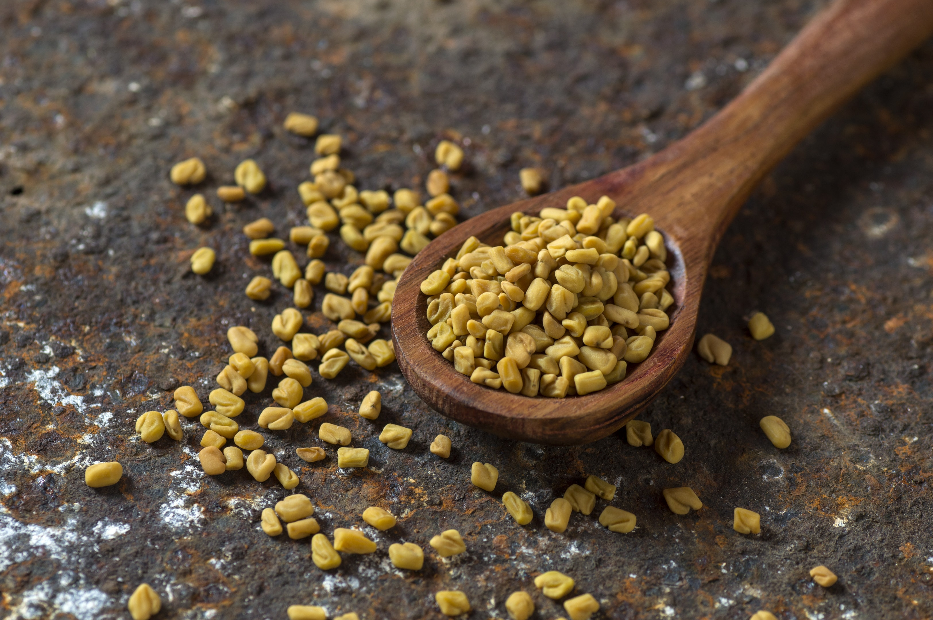 Fenugreek seeds in wooden spoon textured background