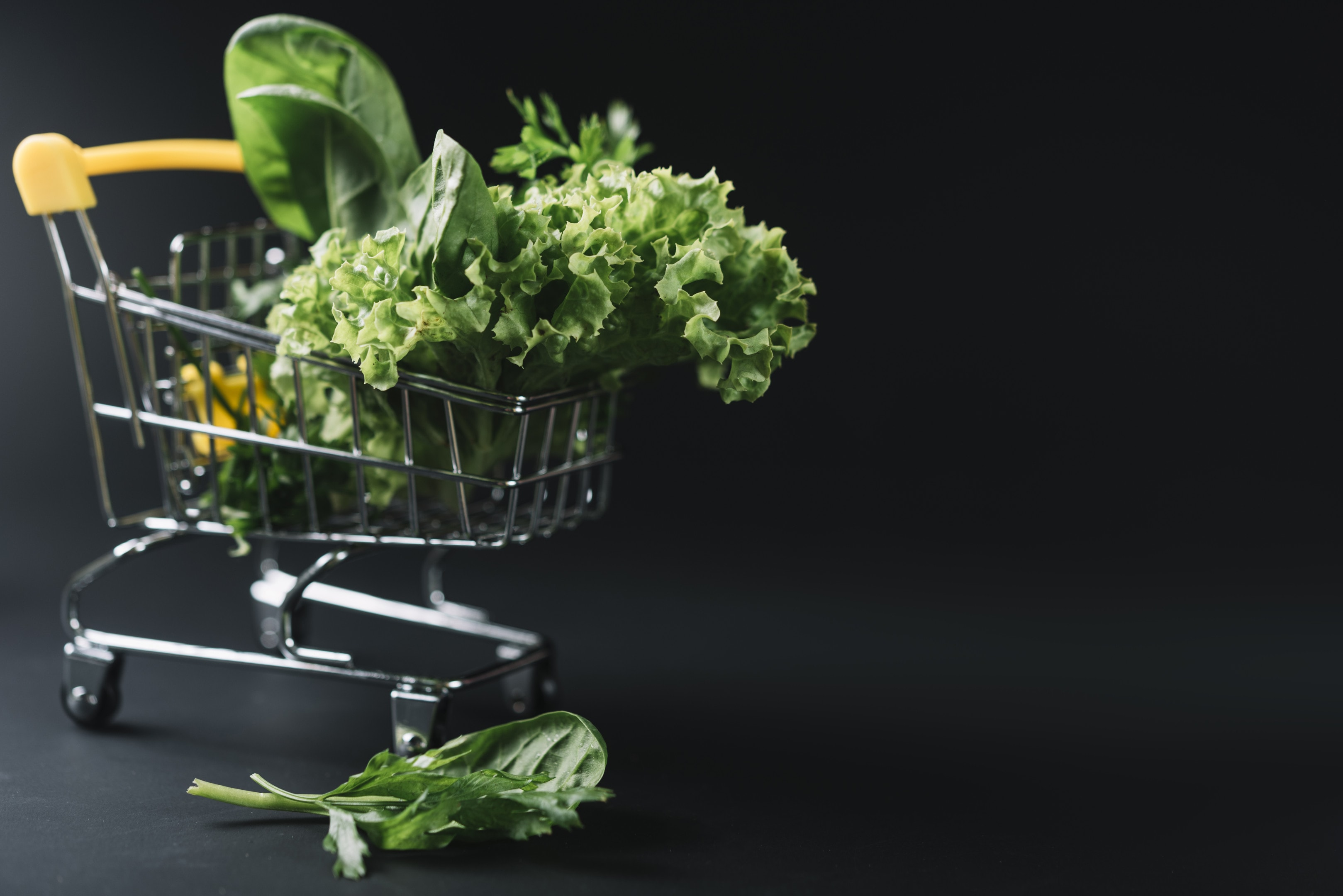 Fresh leafy green vegetables in small shopping cart on dark background