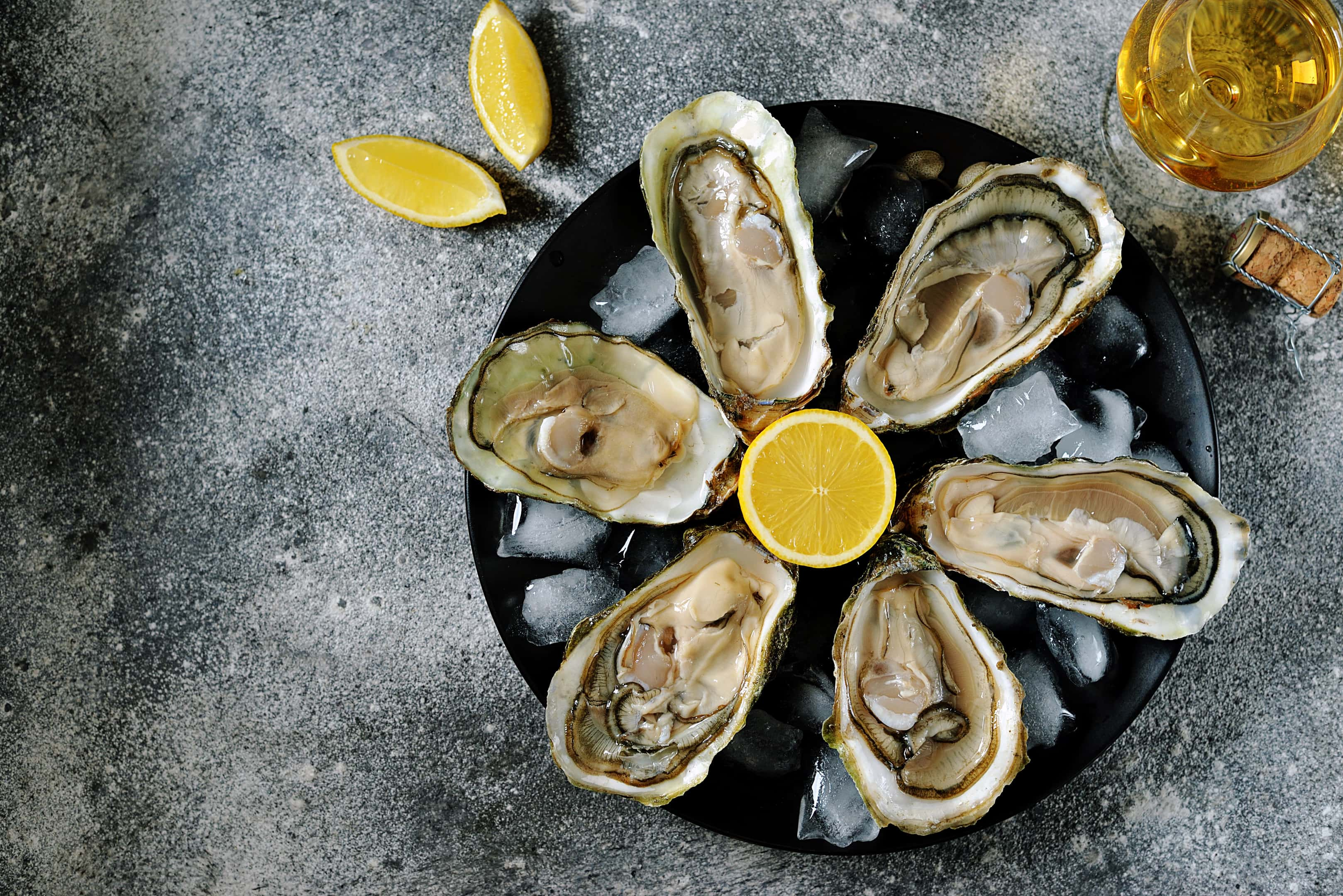 Fresh oysters with lemon slices on plate