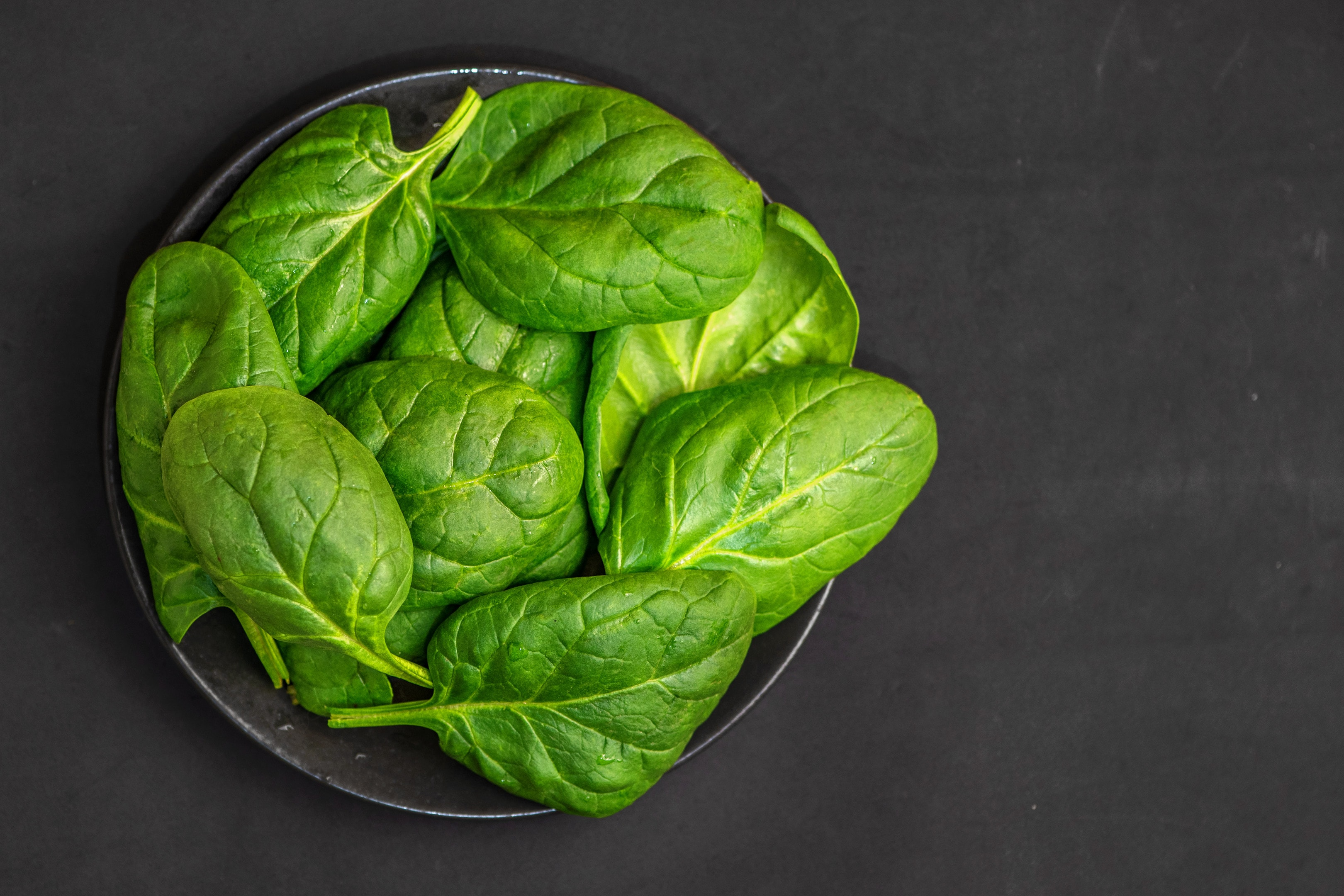 Fresh spinach leaves in bowl on dark background