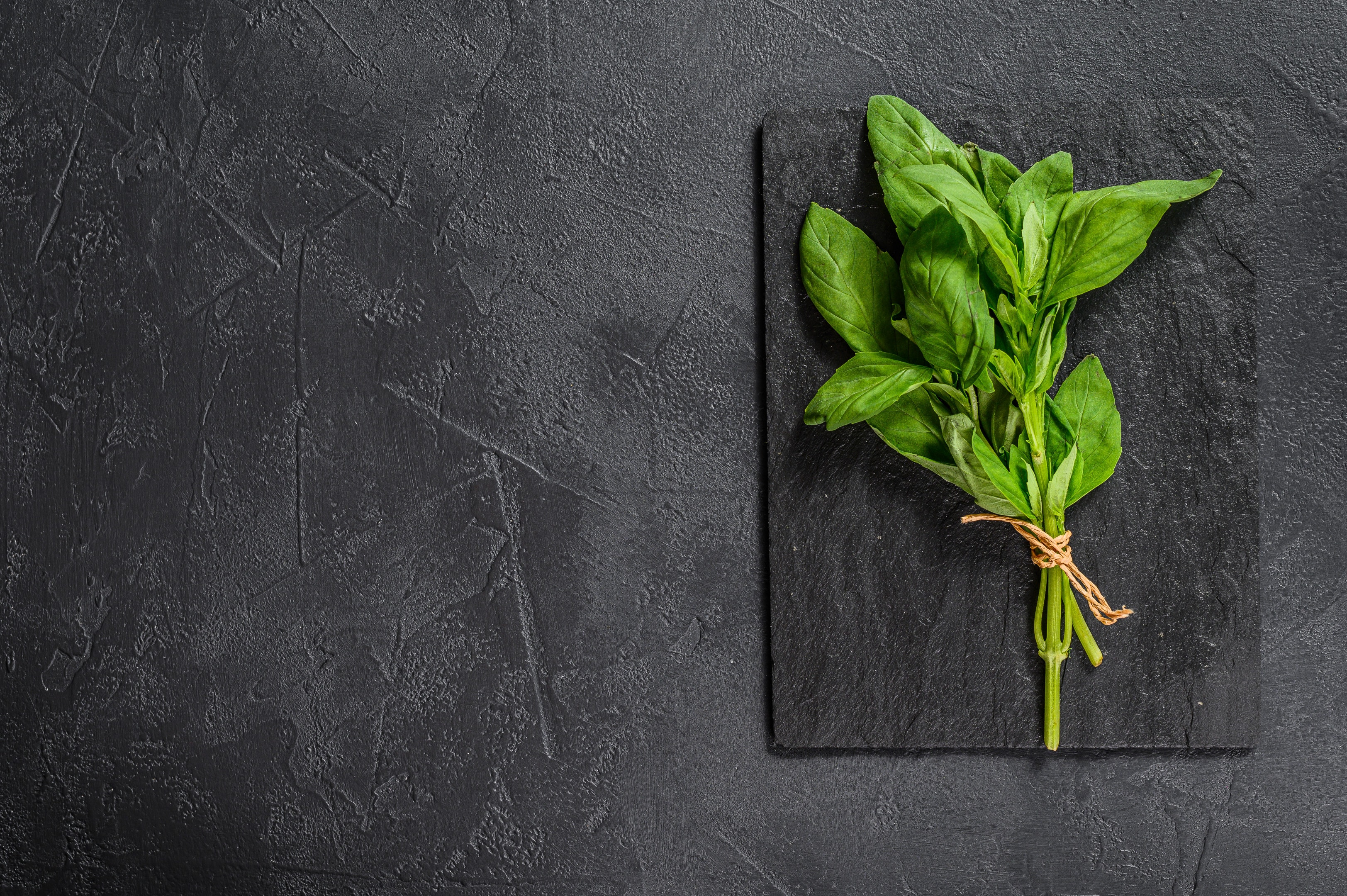 Sprig of fresh basil on stone board on stone table