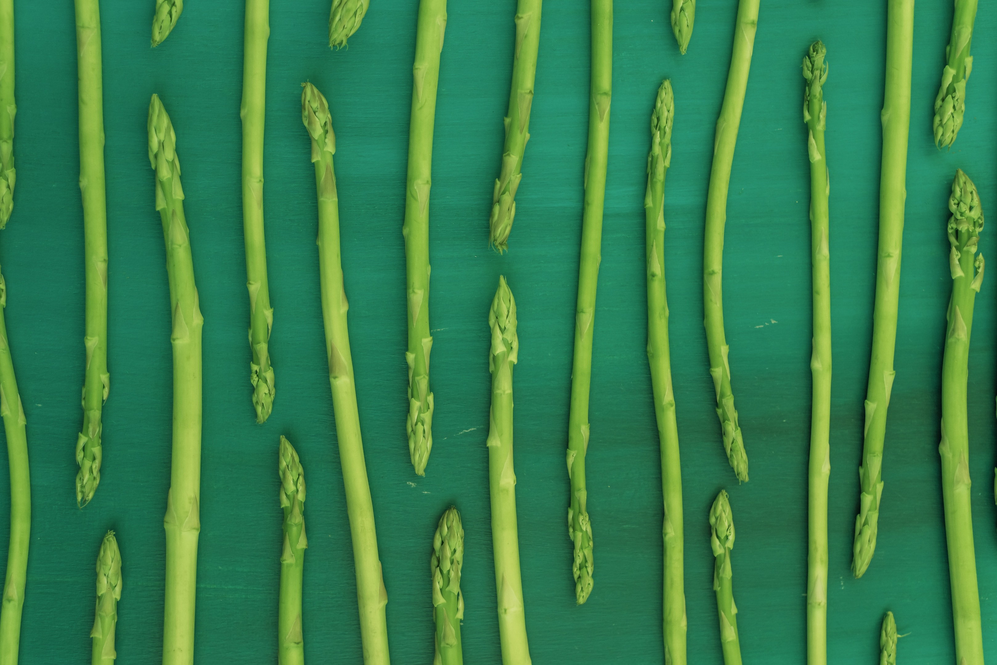 Fresh green asparagus on green background