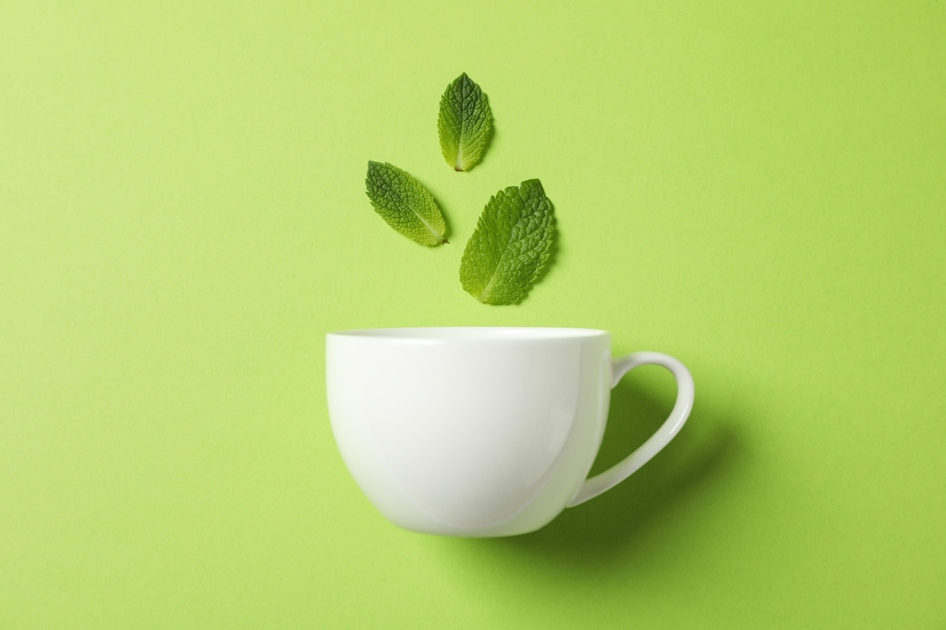 Green tea in white cup with mint leaves on green background