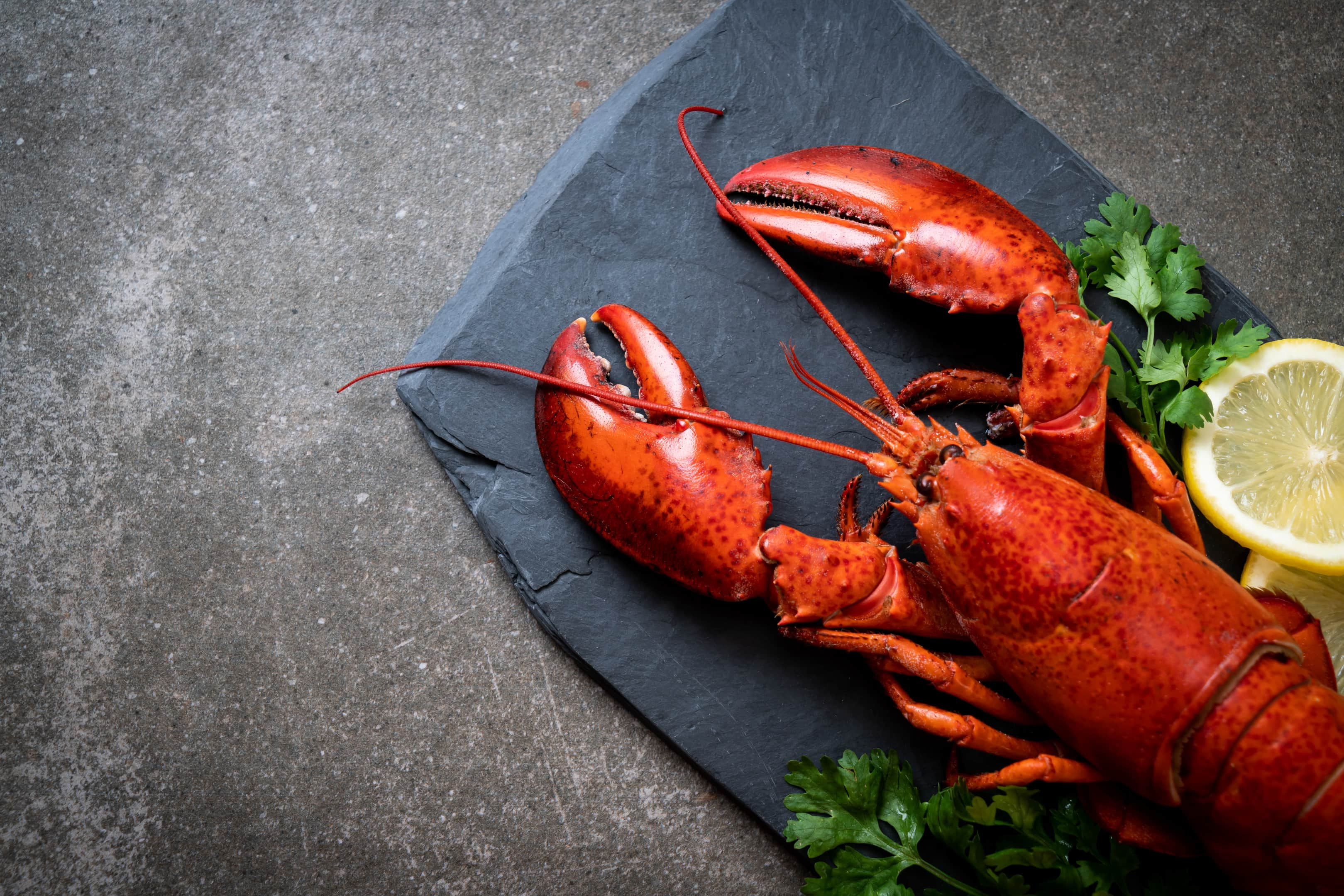 Lobster with lemon on black slate plate