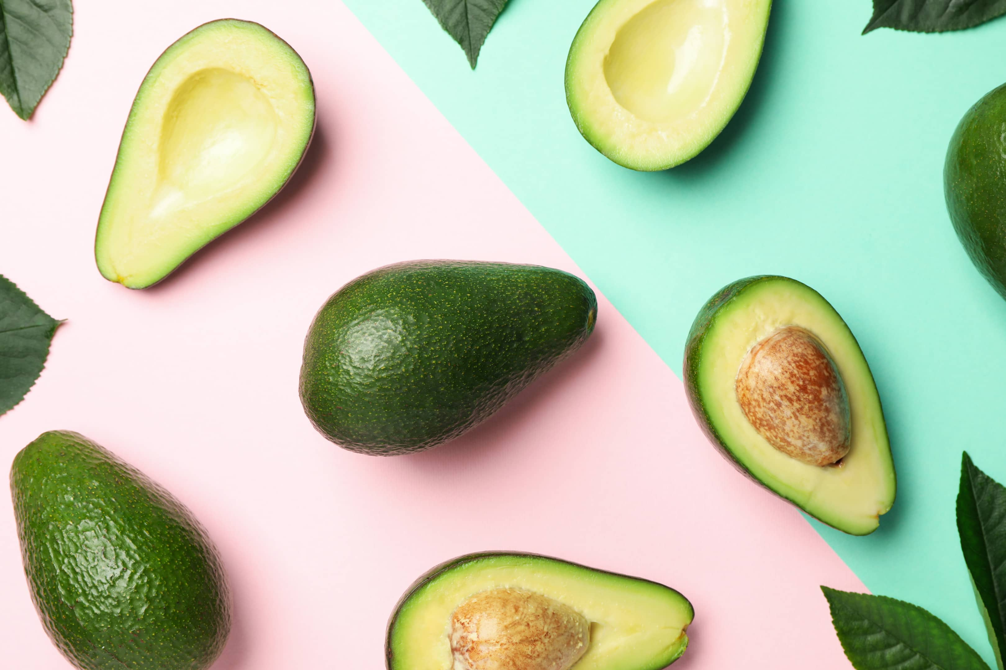 Avocado and avocado leaves on two tone background