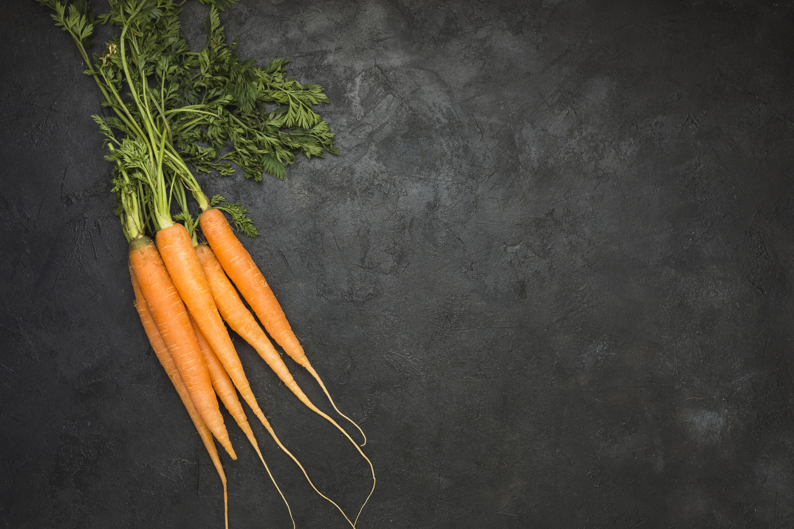 Fresh carrots on dark background