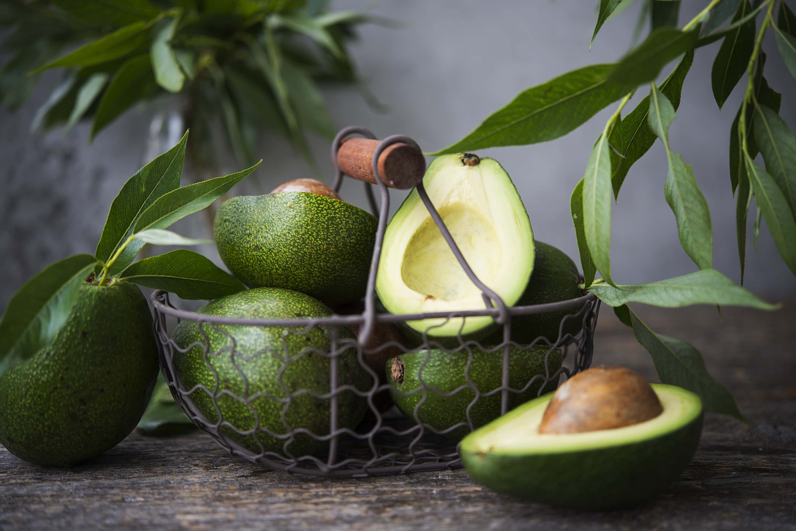 Fresh green avocado with leaves in metal basket