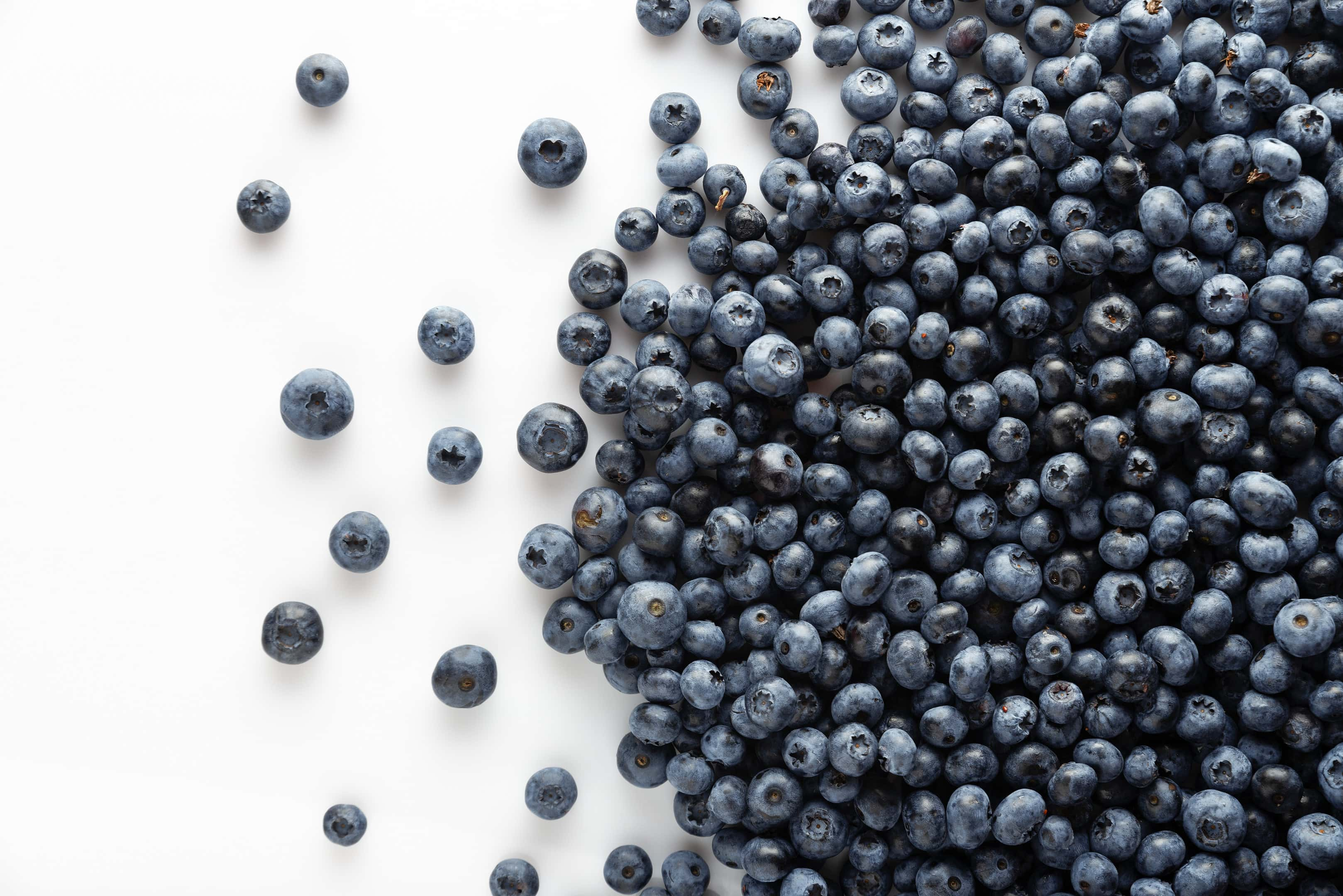 Blueberries scattered on white table