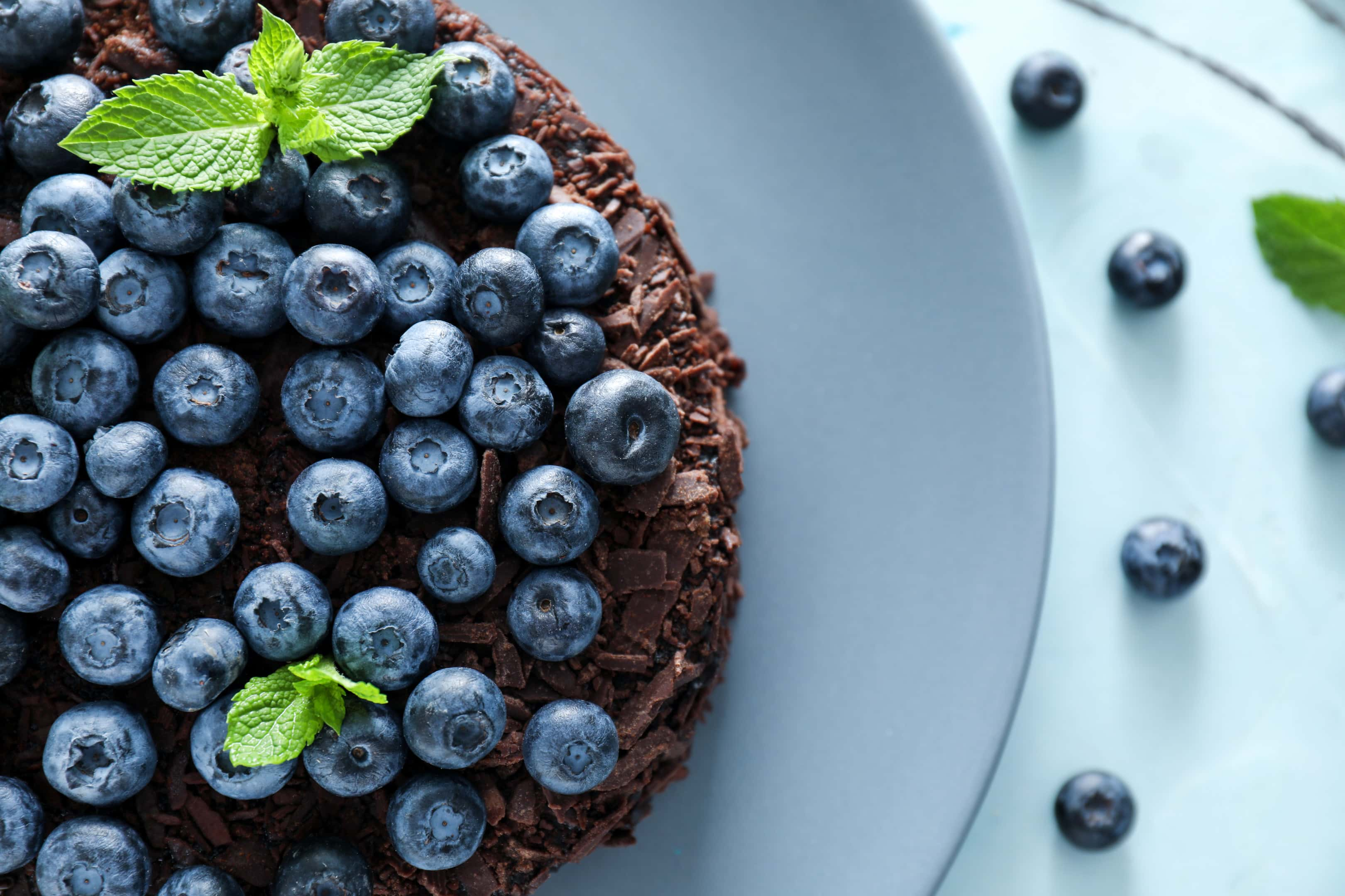 Delicious blueberry chocolate cake on plate