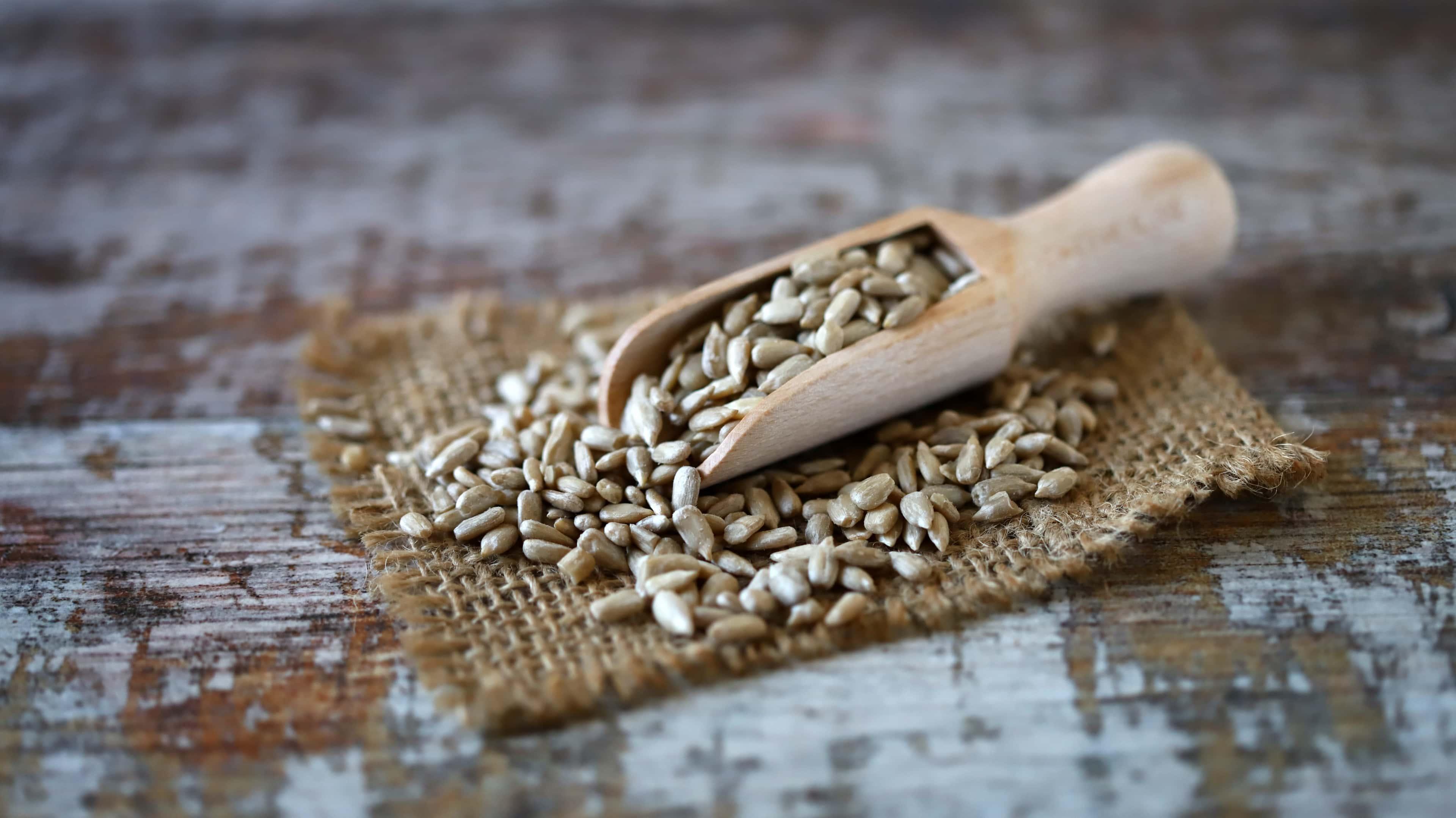 Sunflower seeds in wooden spatula