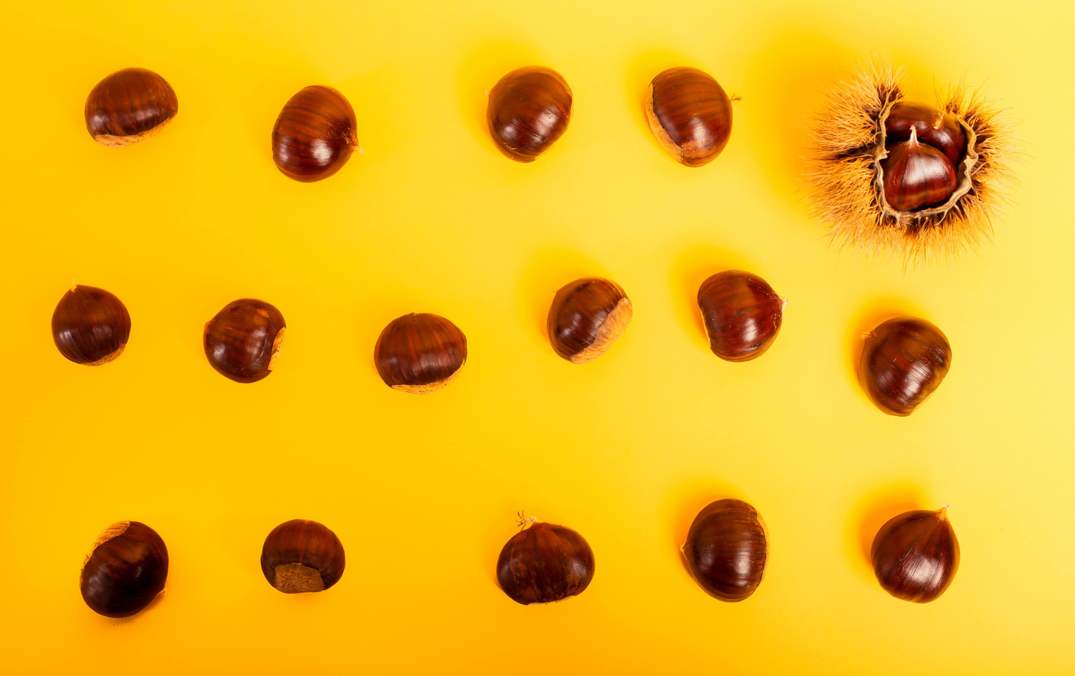 Chestnuts assortment on yellow background