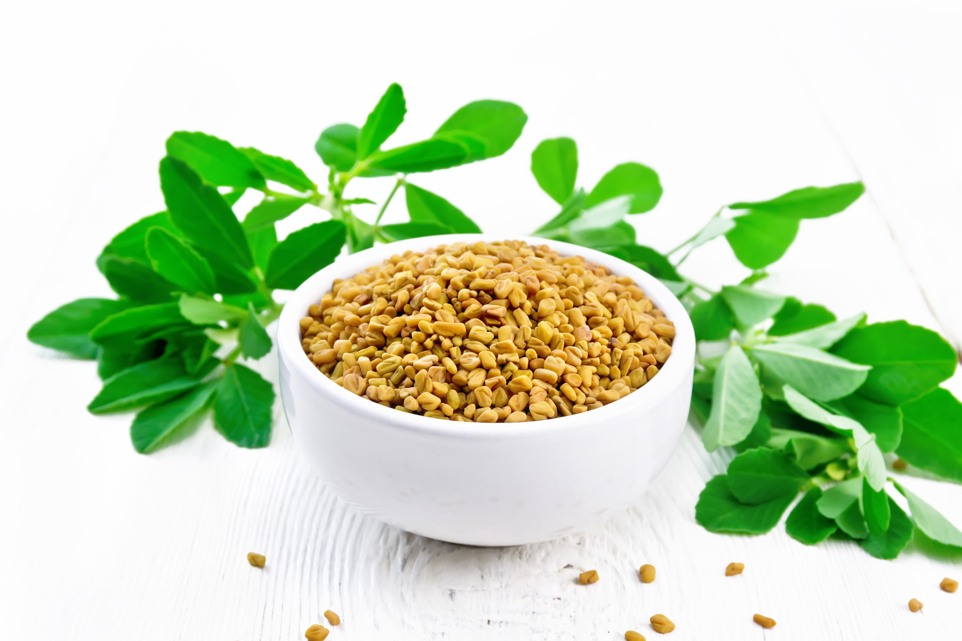 Fenugreek seeds with in a bowl with green leaves