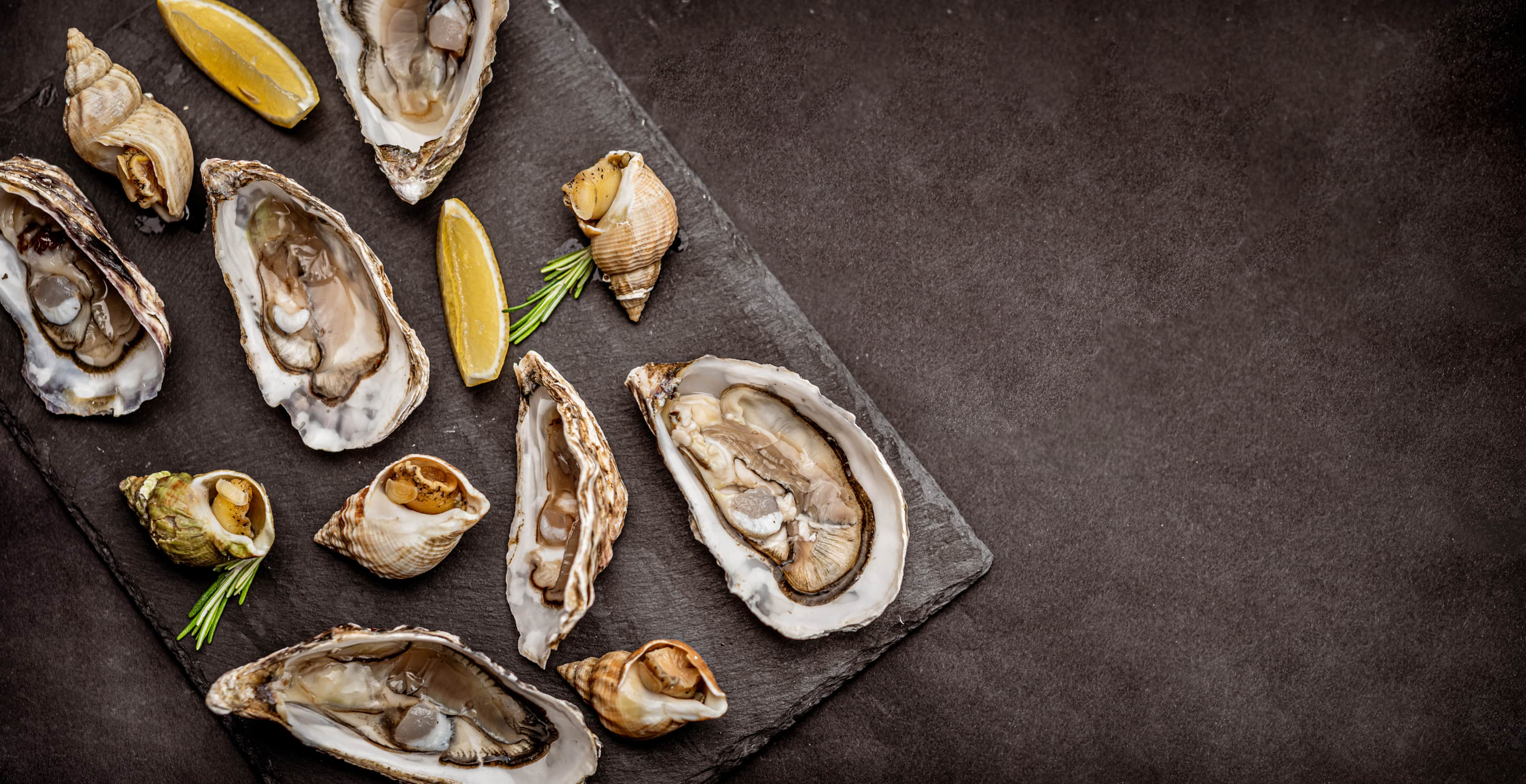 Raw oysters with cooked snails on black platter