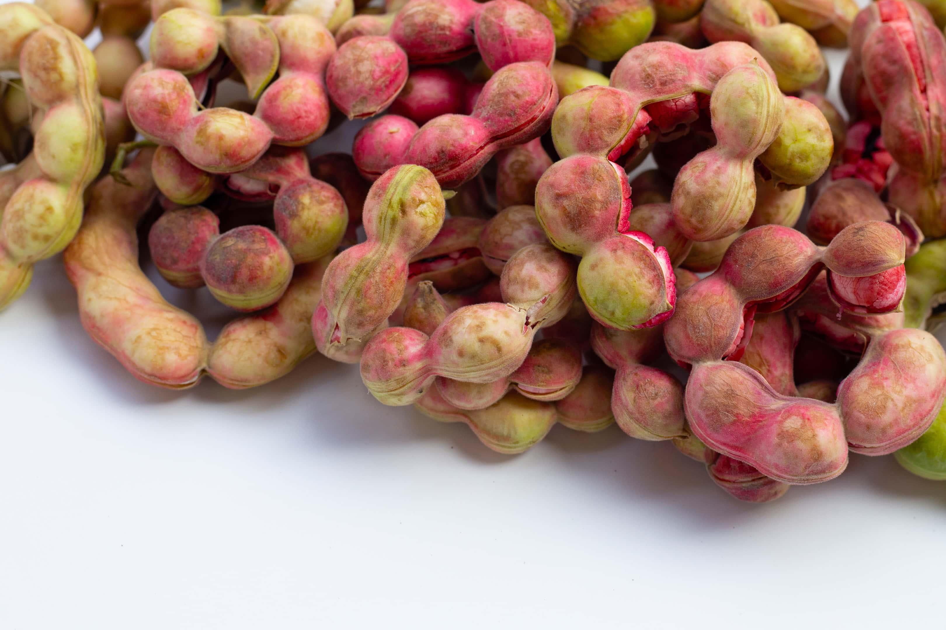 Seeni puliyanga — Manila tamarind fruit (pithecellobium dulce) on white surface