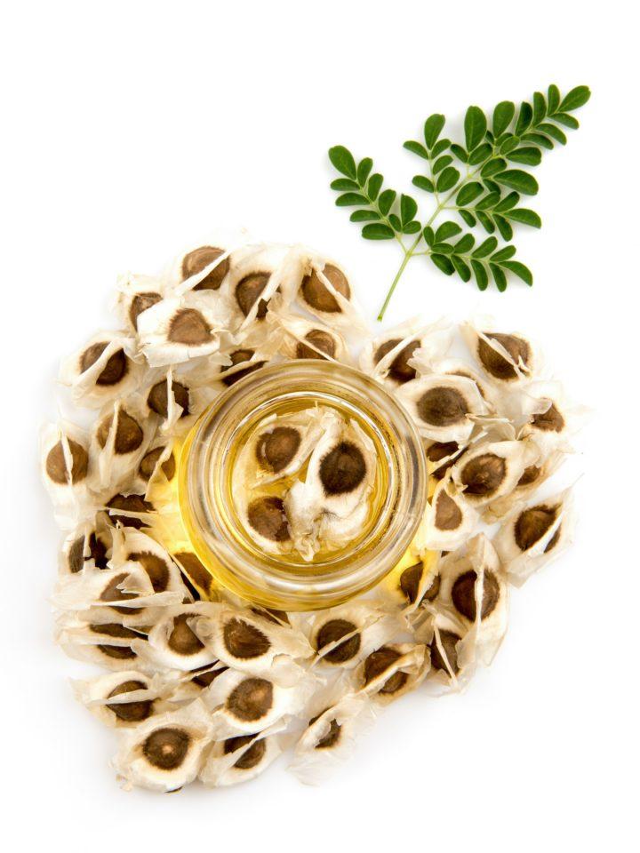 Dried moringa seeds with moringa oil and leaves