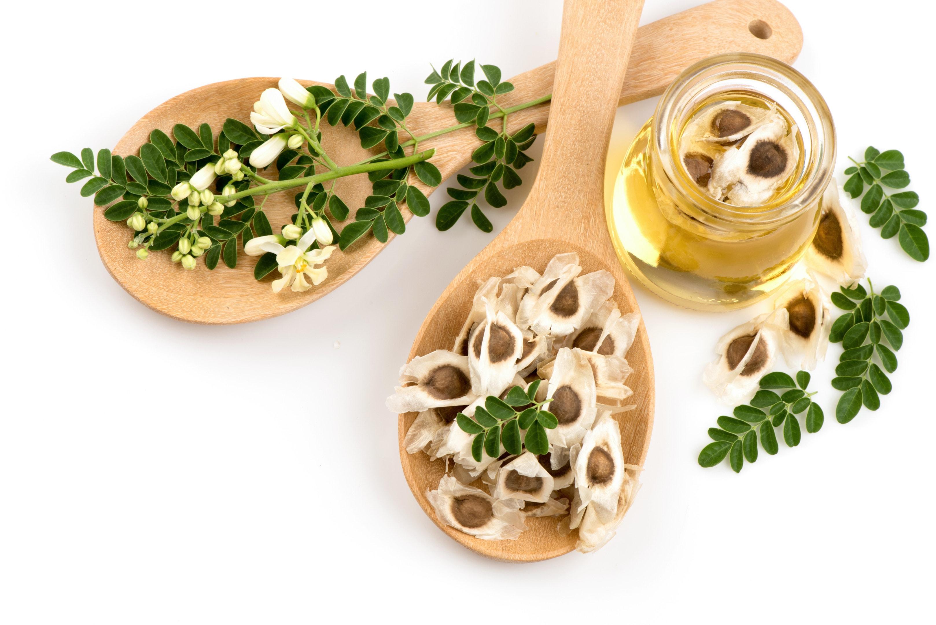 Moringa oil with moringa seeds and moringa leaves